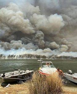 australian bush fires